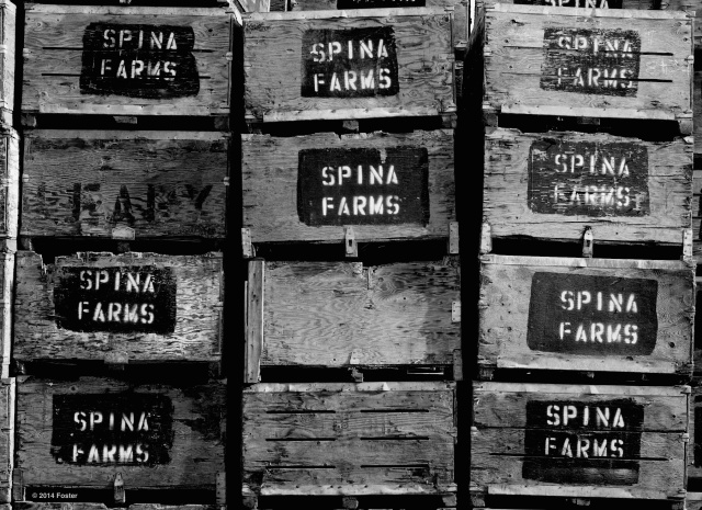 Spina Farms