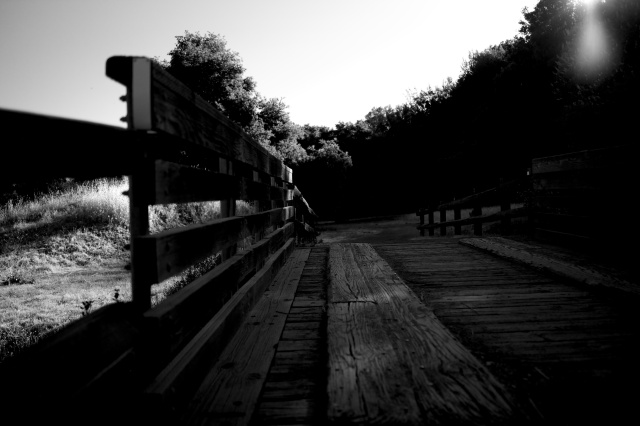 Evening Bridge